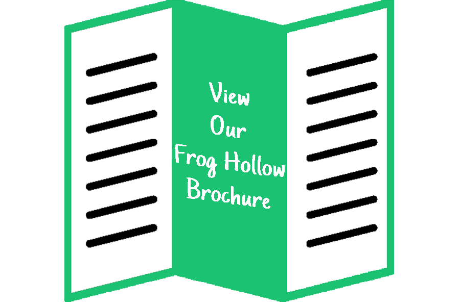 frog hollow brochure icon